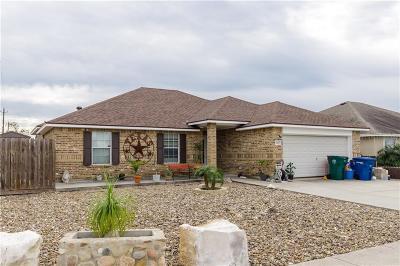 Corpus Christi Single Family Home For Sale: 2301 Kazimir Dr