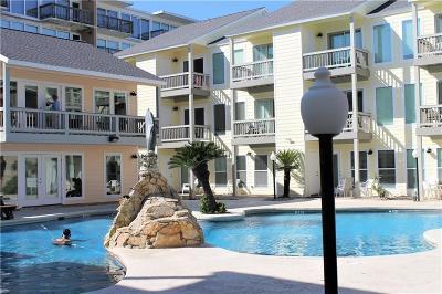 Corpus Christi Condo/Townhouse For Sale: 14802 Windward Dr #217