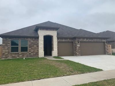 Corpus Christi Single Family Home For Sale: 2205 Aquila
