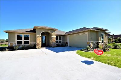 Corpus Christi Single Family Home For Sale: 3826 Nahid Ct