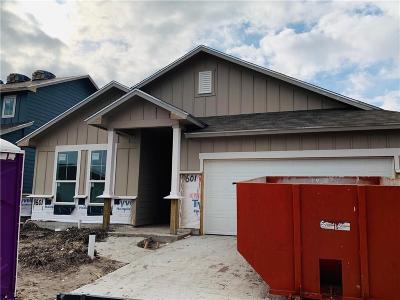 Corpus Christi Single Family Home For Sale: 9601 Sedalia Trail