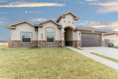 Corpus Christi Single Family Home For Sale: 8010 Snake River Dr