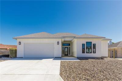Corpus Christi Single Family Home For Sale: 14918 Aquarius St