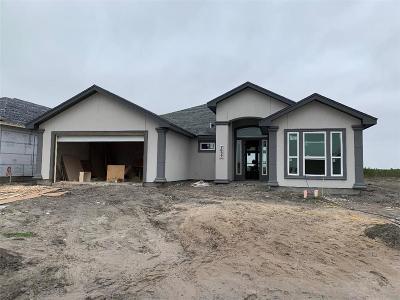 Single Family Home For Sale: 7637 Krypton