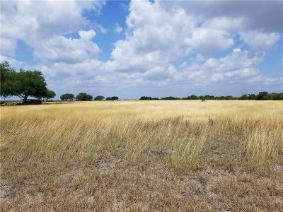 Robstown Residential Lots & Land For Sale: Fm 101