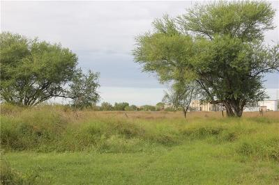 Robstown Residential Lots & Land For Sale: 3322 County Rd 38a