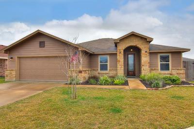 Corpus Christi Single Family Home For Sale: 1121 Fallow Lane