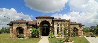Kingsville Single Family Home For Sale: 308 Reidda Dr