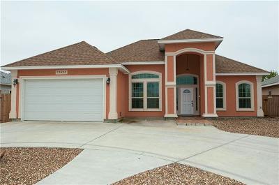 Single Family Home For Sale: 13925 Suntan Ave