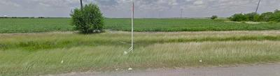 Robstown Residential Lots & Land For Sale: 77 Us Hwy 77 Hwy