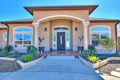 Corpus Christi Single Family Home For Sale: 15602 Dyna St