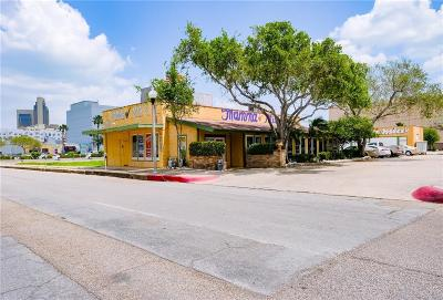 Commercial For Sale: 128 N Mesquite St