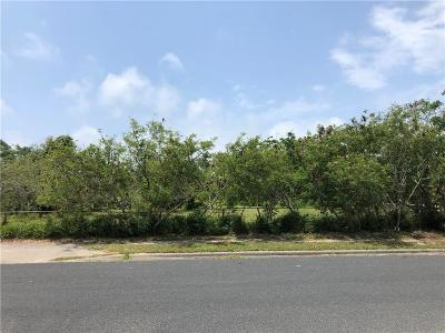 Corpus Christi Residential Lots & Land For Sale: 14/8 Webb St.