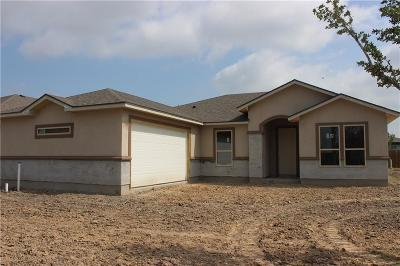 Corpus Christi Single Family Home For Sale: 7622 Neches Dr