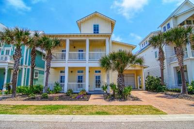 Port Aransas Single Family Home For Sale: 133 Seaside Dr