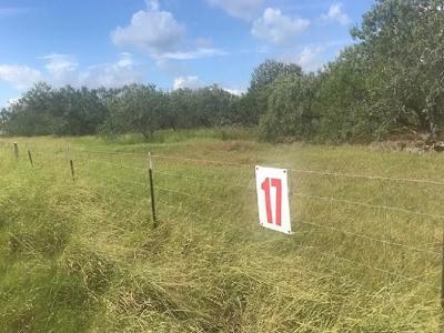 Kingsville Residential Lots & Land For Sale: 262 Fm 772 Cr