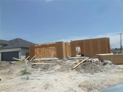 Corpus Christi Single Family Home For Sale: 4226 Latitude St