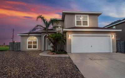 Corpus Christi Single Family Home For Sale: 14041 Coquina Bay Ave