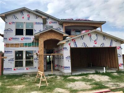 Corpus Christi Single Family Home For Sale: 7606 Pirates Dr