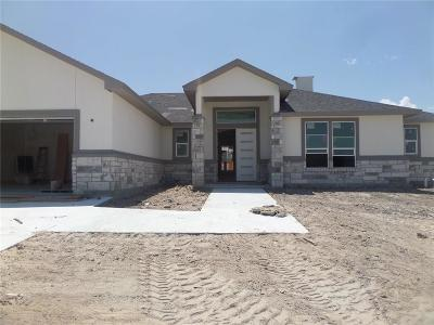 Corpus Christi Single Family Home For Sale: 7313 Westerly Ct