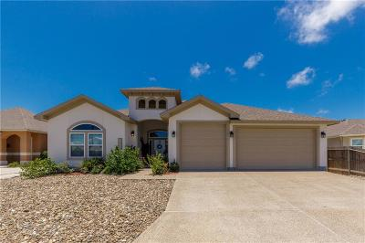 Corpus Christi Single Family Home For Sale: 15821 Punta Espada