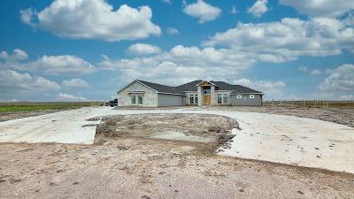 Corpus Christi Single Family Home For Sale: 1374 Lion Heart Ct