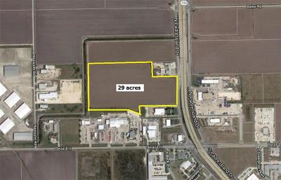 Corpus Christi Residential Lots & Land For Sale: 11518 Padre Island Dr