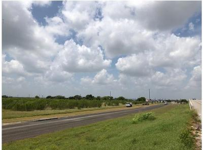 Corpus Christi Commercial For Sale: 8801 State Hwy 44