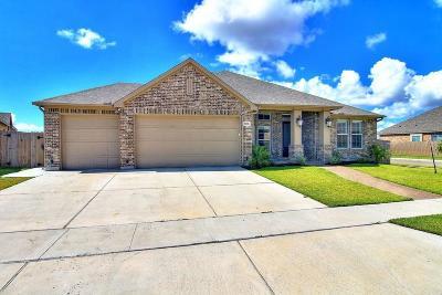 Corpus Christi Single Family Home For Sale: 7938 Todd Hunter Dr