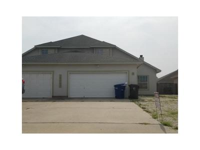 Corpus Christi Multi Family Home For Sale: 15433 Palmira