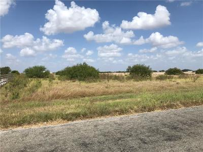 Robstown Residential Lots & Land For Sale: 2647 County Road 61