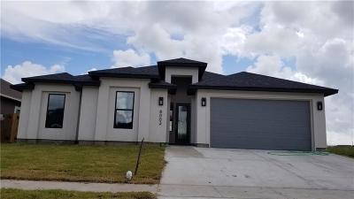 Corpus Christi Single Family Home For Sale: 8002 Snake River Dr