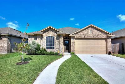 Corpus Christi Single Family Home For Sale: 2205 Ibis St