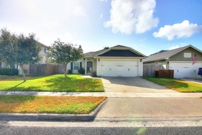 Corpus Christi Single Family Home For Sale: 2118 Abeto Dr