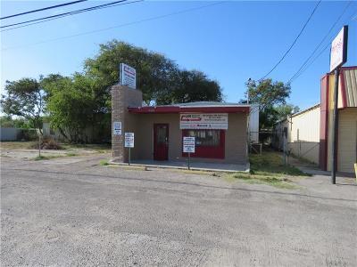 Corpus Christi Commercial For Sale: 4606 Leopard St