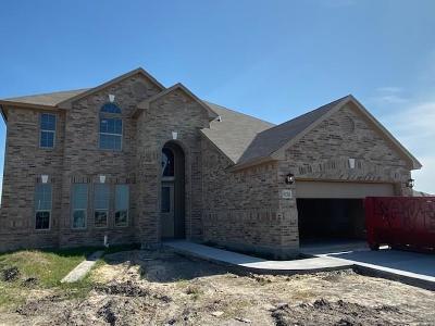 Corpus Christi Single Family Home For Sale: 8170 Luz De Luna