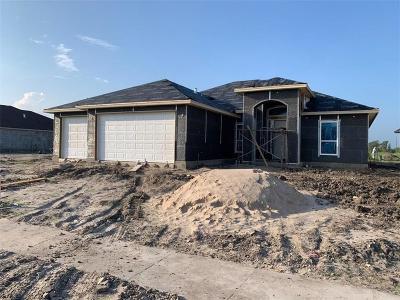 Corpus Christi Single Family Home For Sale: 7909 Iron Man