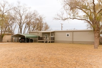 Seminole TX Single Family Home For Sale: $97,890