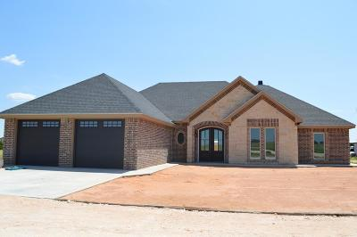 Seminole TX Single Family Home For Sale: $329,000