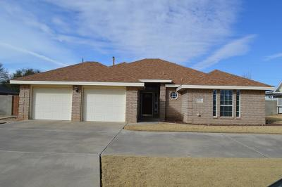 Seminole TX Single Family Home For Sale: $249,900