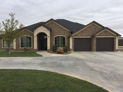 Seminole TX Single Family Home For Sale: $454,900