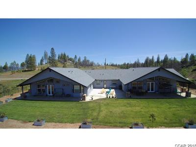Single Family Home For Sale: 7451 Ponderosa Way