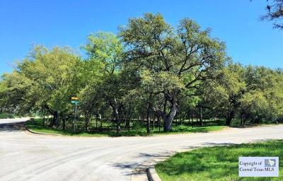 San Marcos Residential Lots & Land For Sale: 105 Sierra Ridge Drive