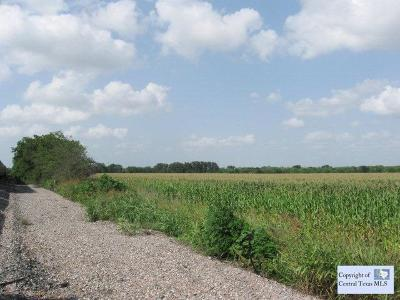 New Braunfels Residential Lots & Land For Sale: Orion Drive