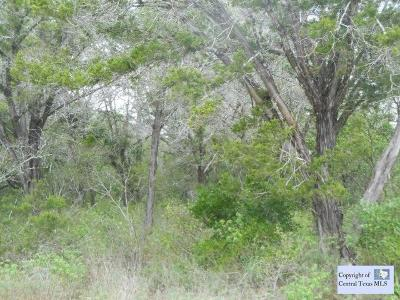 San Marcos Residential Lots & Land For Sale: 551 Riverbend Boulevard