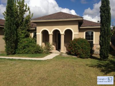 Single Family Home Sold: 1405 Trail Boss Drive Drive
