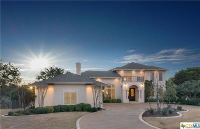 Belton Single Family Home Pending Take Backups: 4050 Lago Vista Drive