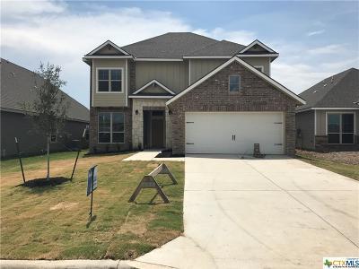 Belton Single Family Home For Sale: 5314 Fenton Lane