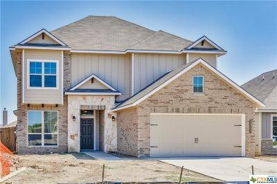 Bell County, Coryell County, Lampasas County Single Family Home For Sale: 1305 Amber Dawn Drive