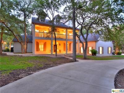 Hays County Single Family Home For Sale: 1500 Hog Hollow Road